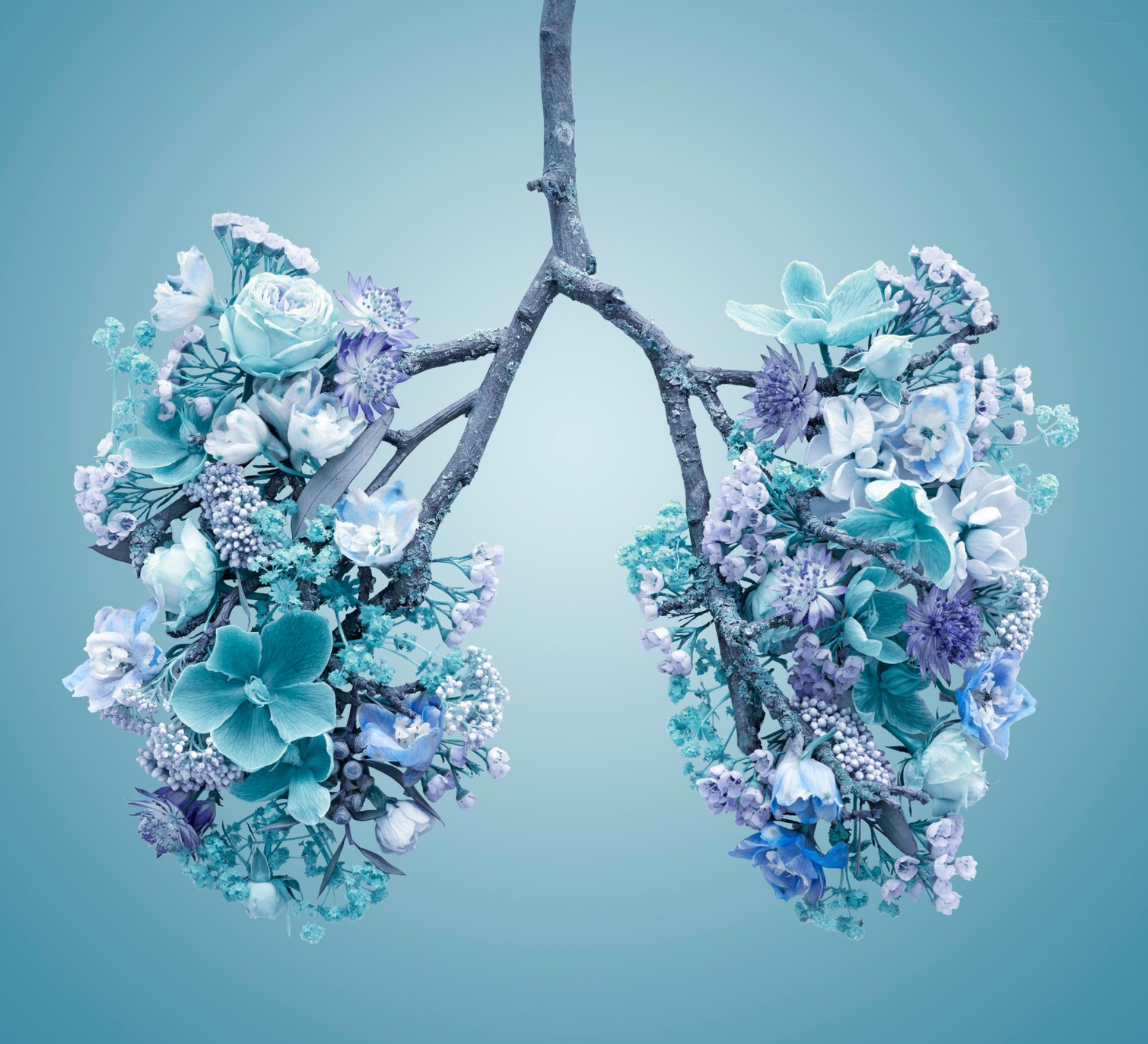 Floral Respiratory System